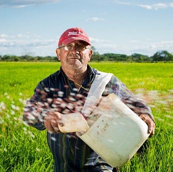 Ayudas para titulares de explotación agraria